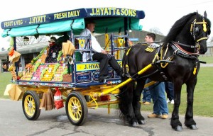 Traditional London Harness Horse Parade 1