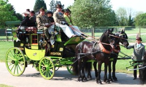 Traditional London Harness Horse Parade 4